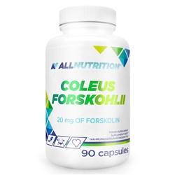 Coleus Forskohlii