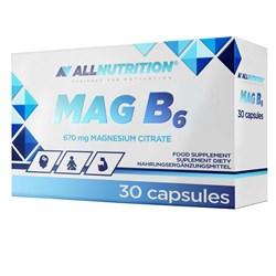Mag B6